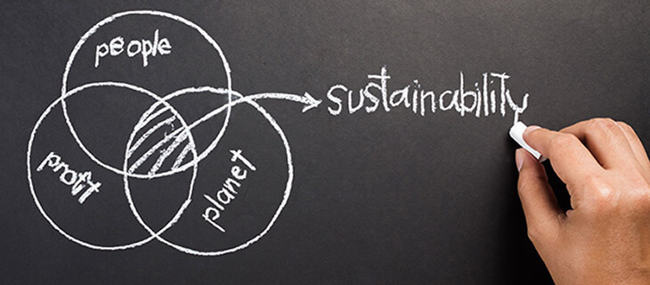 Considering A Sustainability Program